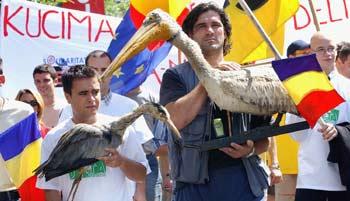 Campania Civic Media Salvati Delta Solidaritate Bistroe